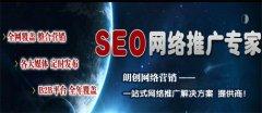 郑州网站推广外包